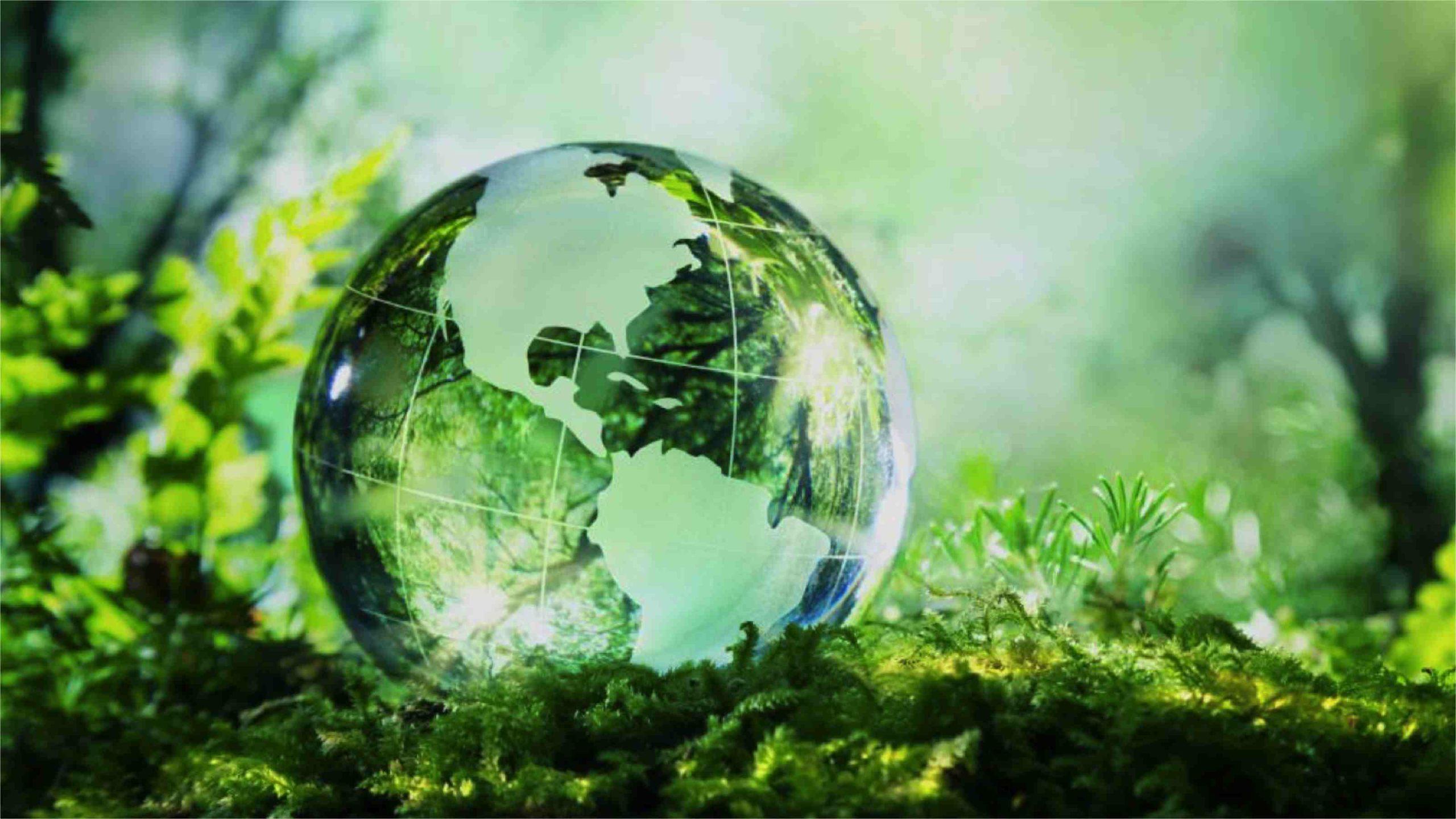 Travaux de transition écologique : où trouver le financement adéquat ?